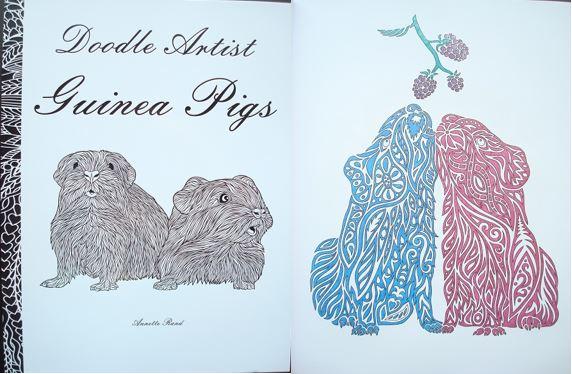 doodle-artist-guinea-pigs