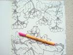 the-flower-fairies-colouring-book-20