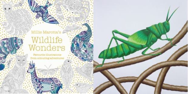 Millie Marotta's Wildlife Wonders - Click through to see the written review, video flip through and images from inside the book